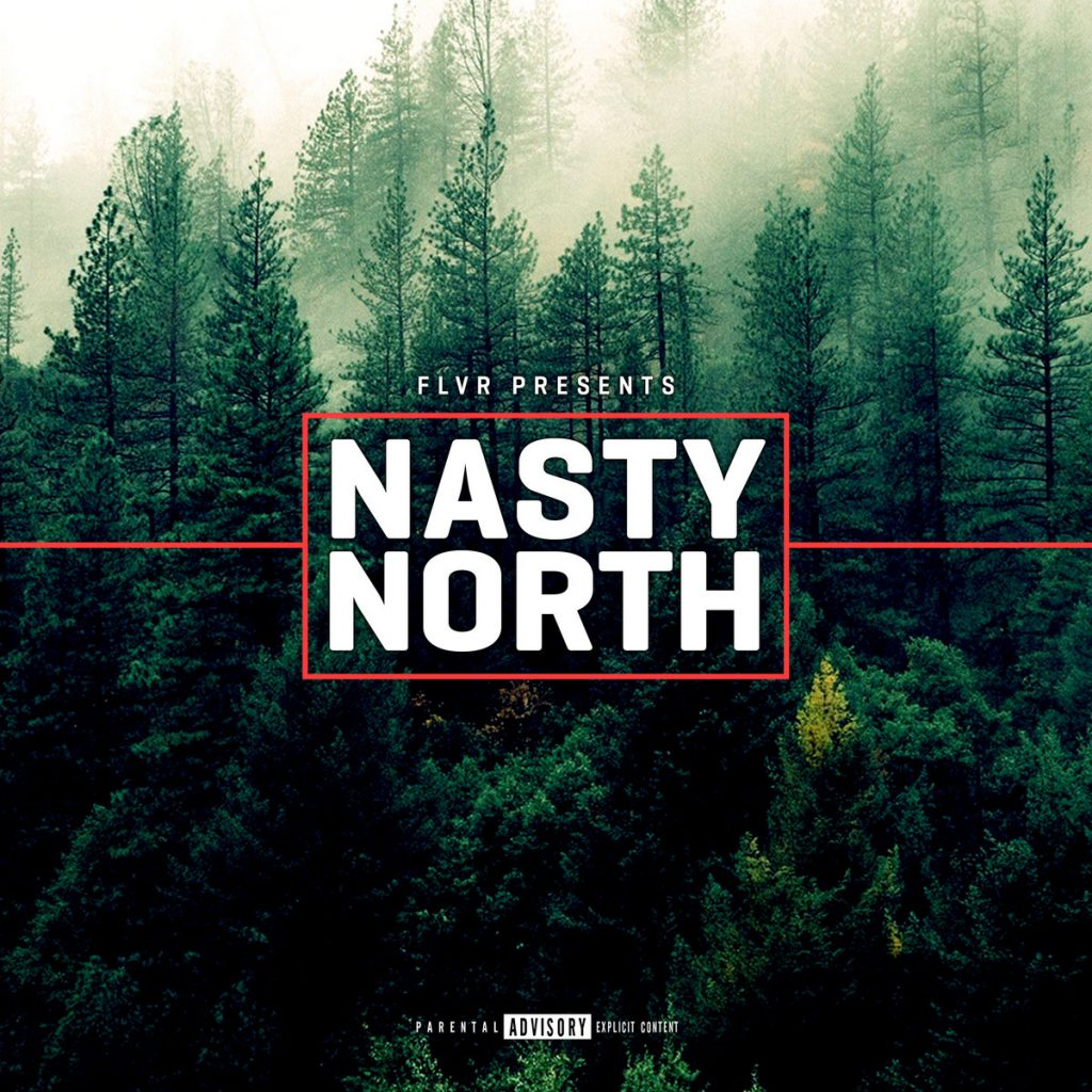 FLVR Records - Nasty North album cover