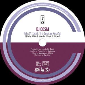 DJ Cosm - Rules album cover